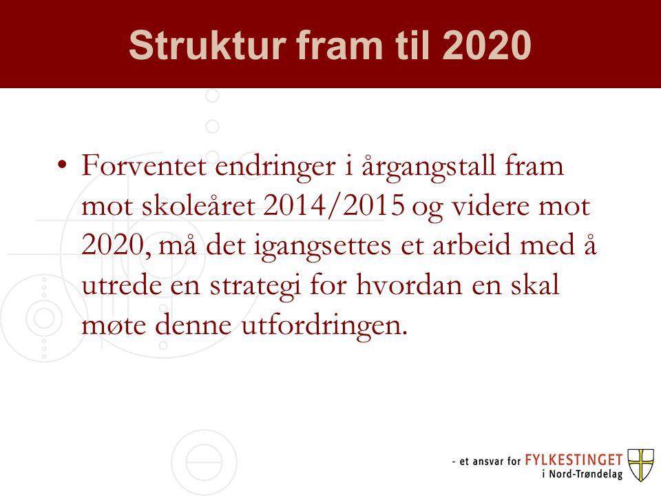 Struktur fram til 2020 •Forventet endringer i årgangstall fram mot skoleåret 2014/2015 og videre mot 2020, må det igangsettes et arbeid med å utrede en strategi for hvordan en skal møte denne utfordringen.