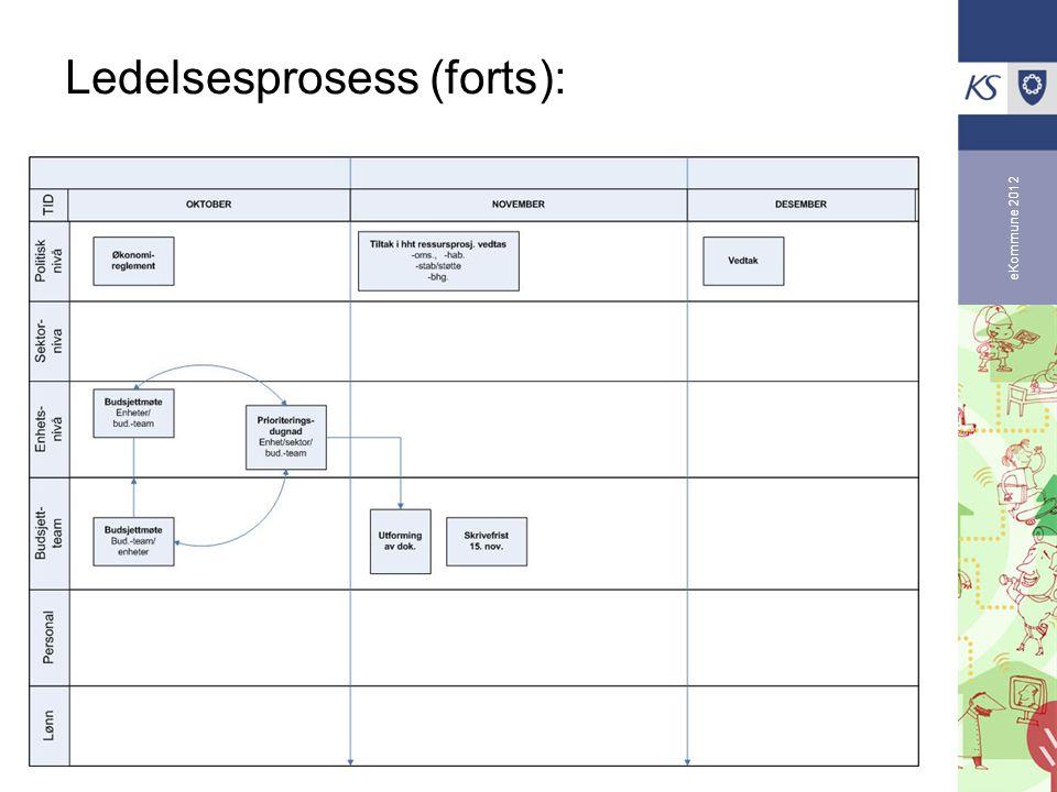 eKommune 2012 Ledelsesprosess (forts):