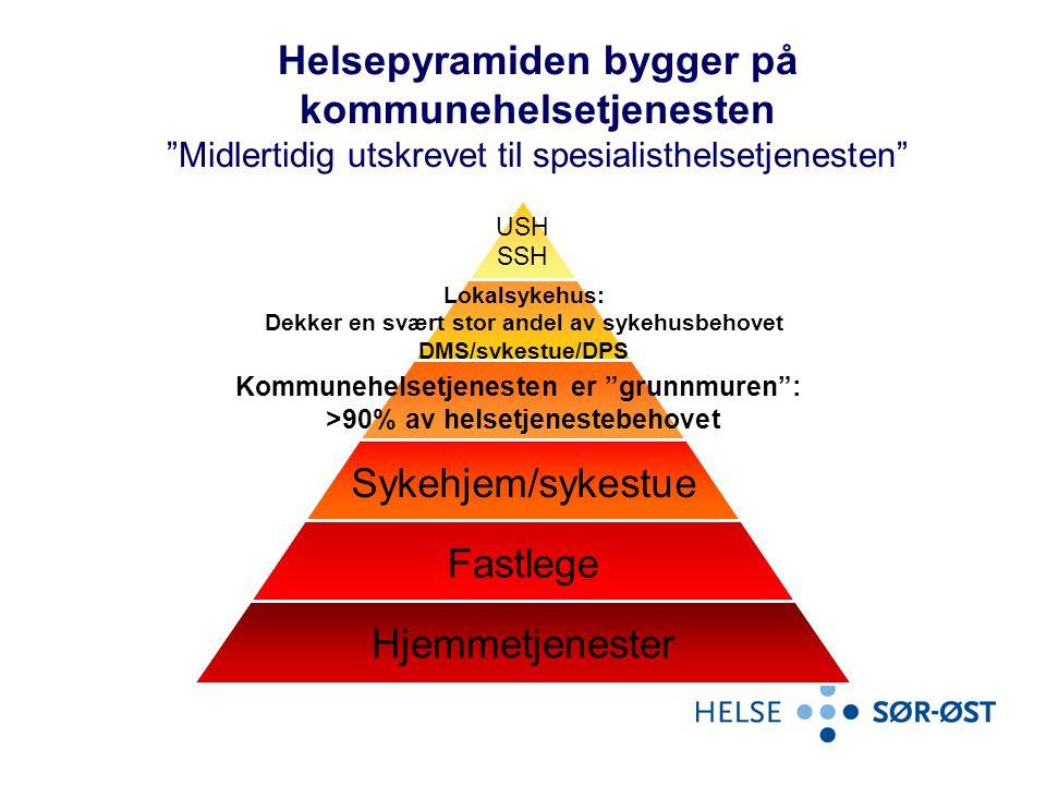 """Helsepyramiden bygger på kommunehelsetjenesten """"Midlertidig utskrevet til spesialisthelsetjenesten"""""""