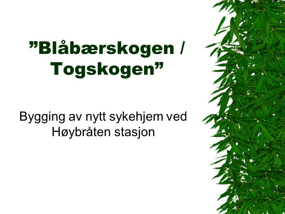 """""""Blåbærskogen / Togskogen"""" Bygging av nytt sykehjem ved Høybråten stasjon"""