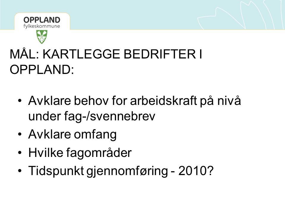 MÅL: KARTLEGGE BEDRIFTER I OPPLAND: •Avklare behov for arbeidskraft på nivå under fag-/svennebrev •Avklare omfang •Hvilke fagområder •Tidspunkt gjennomføring - 2010?