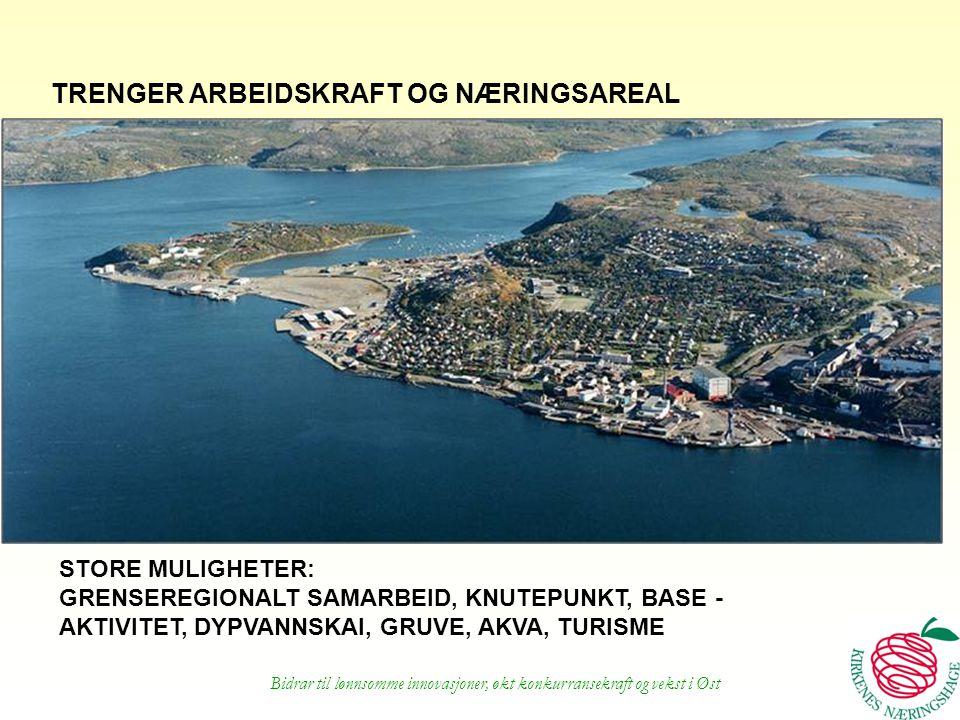 Bidrar til lønnsomme innovasjoner, økt konkurransekraft og vekst i Øst TRENGER ARBEIDSKRAFT OG NÆRINGSAREAL STORE MULIGHETER: GRENSEREGIONALT SAMARBEI