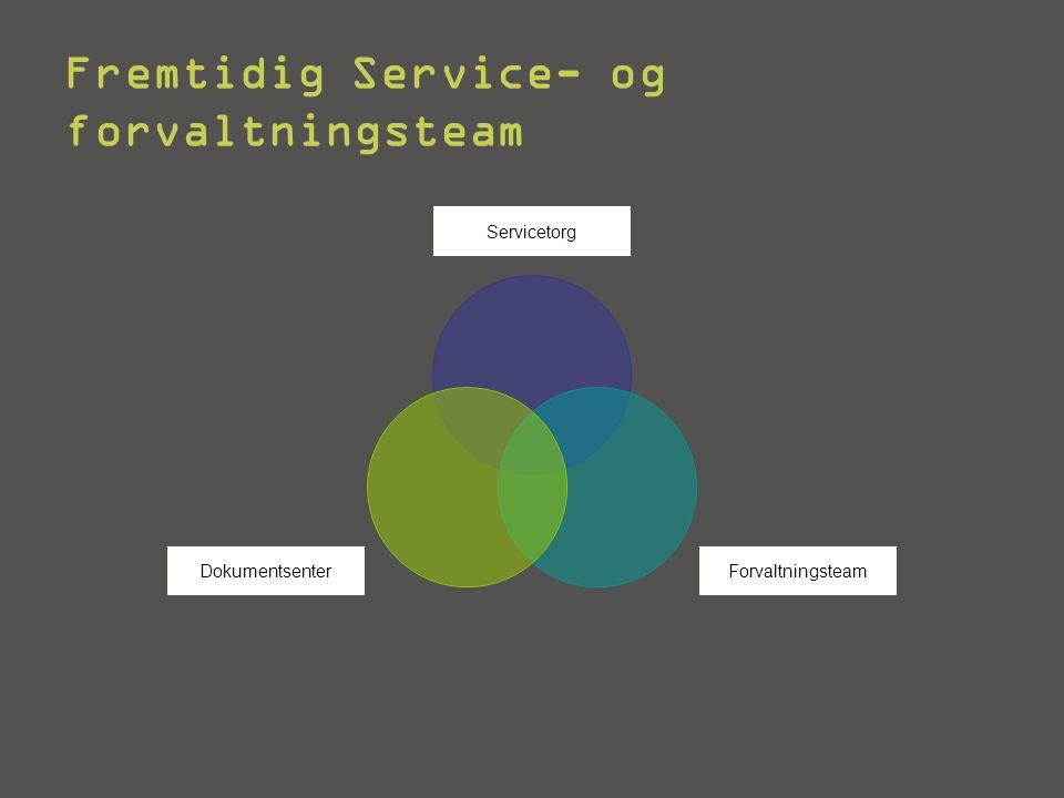 HVA er Service- og forvaltningsteamet.