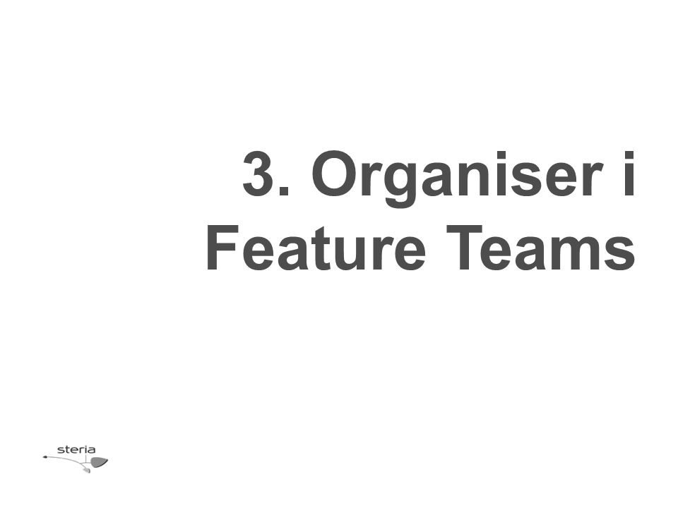 3. Organiser i Feature Teams