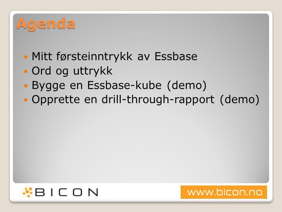 Produktoversikt  Database Enterprise Edition 10g (10.2.0.1.0)  SQL Developer 11g (2.1.0.63)  Essbase 11.1.1.3.00  Essbase Studio 11.1.1.3.00  Hyperion Smartview 11.1.1.3.00