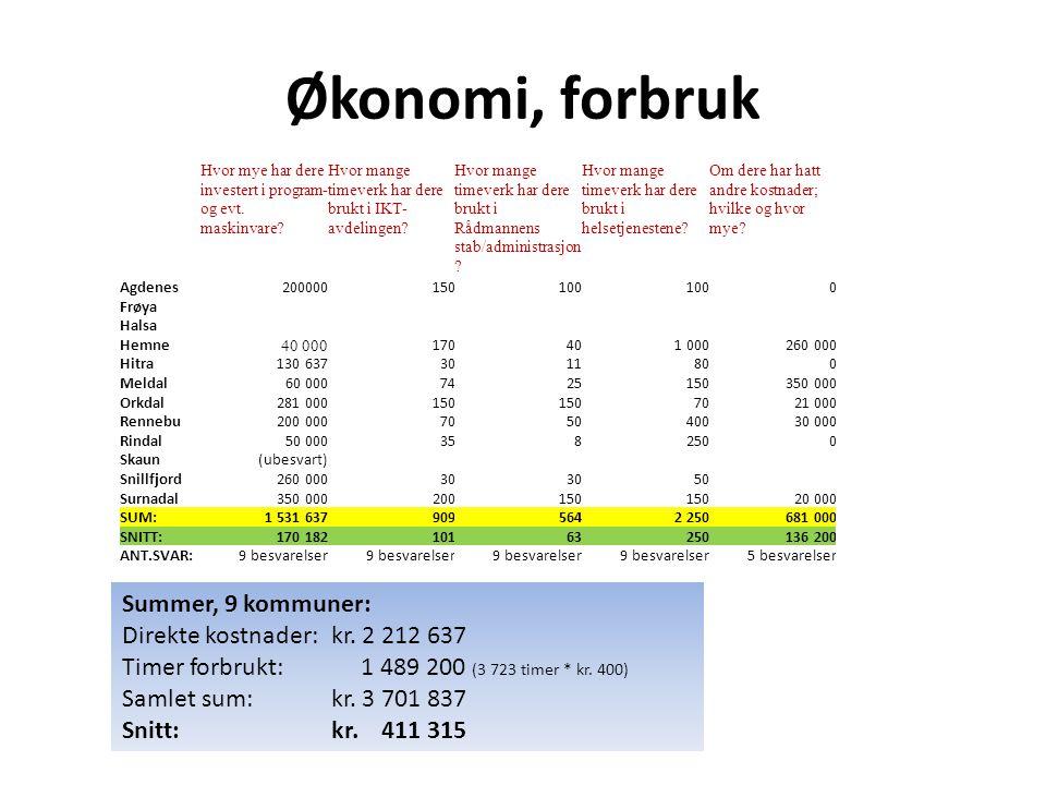 Økonomi, forbruk Hvor mye har dere investert i program- og evt. maskinvare? Hvor mange timeverk har dere brukt i IKT- avdelingen? Hvor mange timeverk