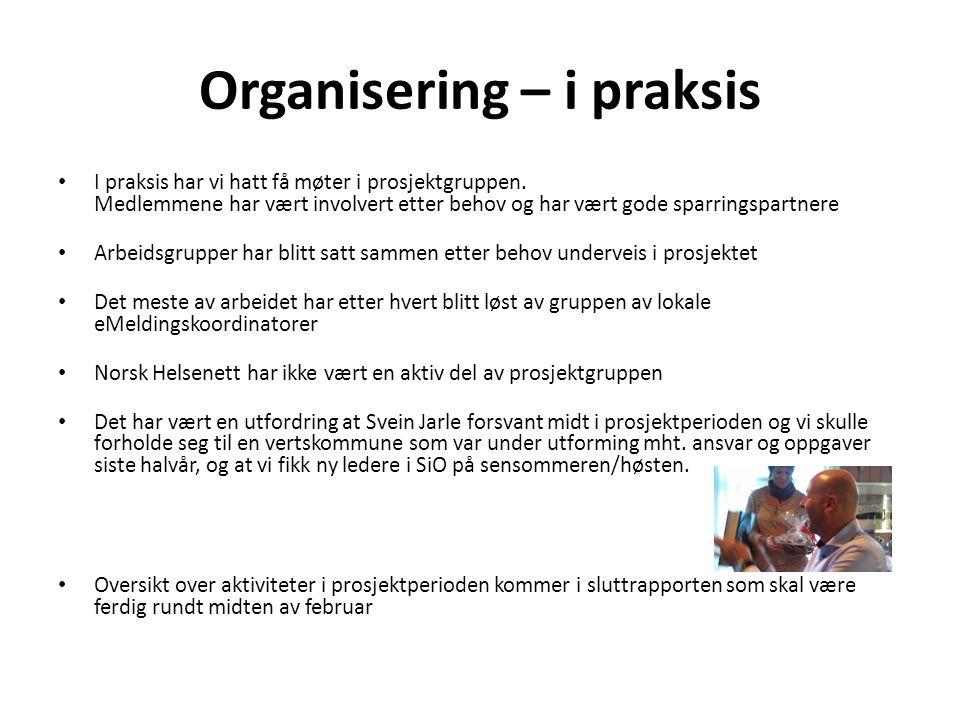 Organisering – i praksis • I praksis har vi hatt få møter i prosjektgruppen. Medlemmene har vært involvert etter behov og har vært gode sparringspartn
