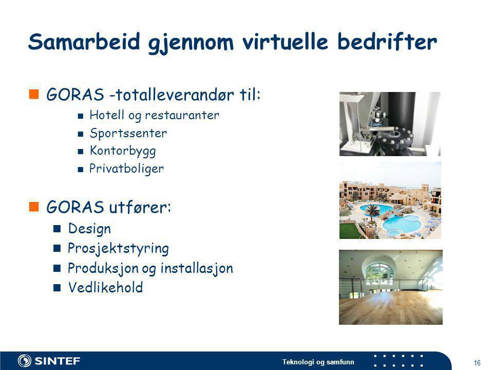 Teknologi og samfunn 16 Samarbeid gjennom virtuelle bedrifter  GORAS -totalleverandør til:  Hotell og restauranter  Sportssenter  Kontorbygg  Pri