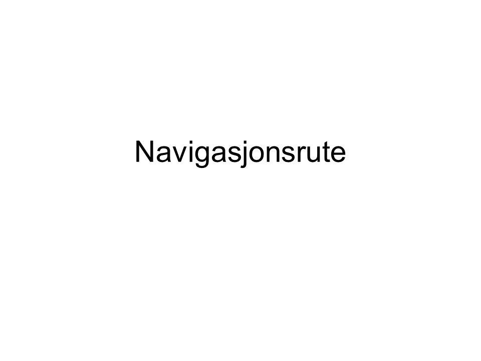 Navigasjonsrute
