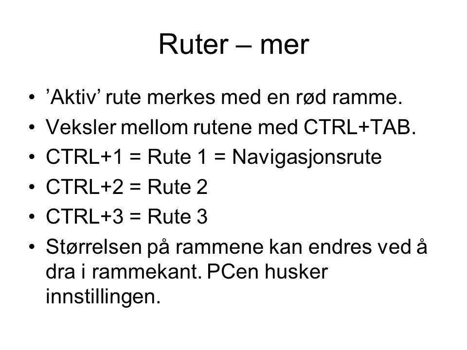 Ruter – mer •'Aktiv' rute merkes med en rød ramme. •Veksler mellom rutene med CTRL+TAB. •CTRL+1 = Rute 1 = Navigasjonsrute •CTRL+2 = Rute 2 •CTRL+3 =