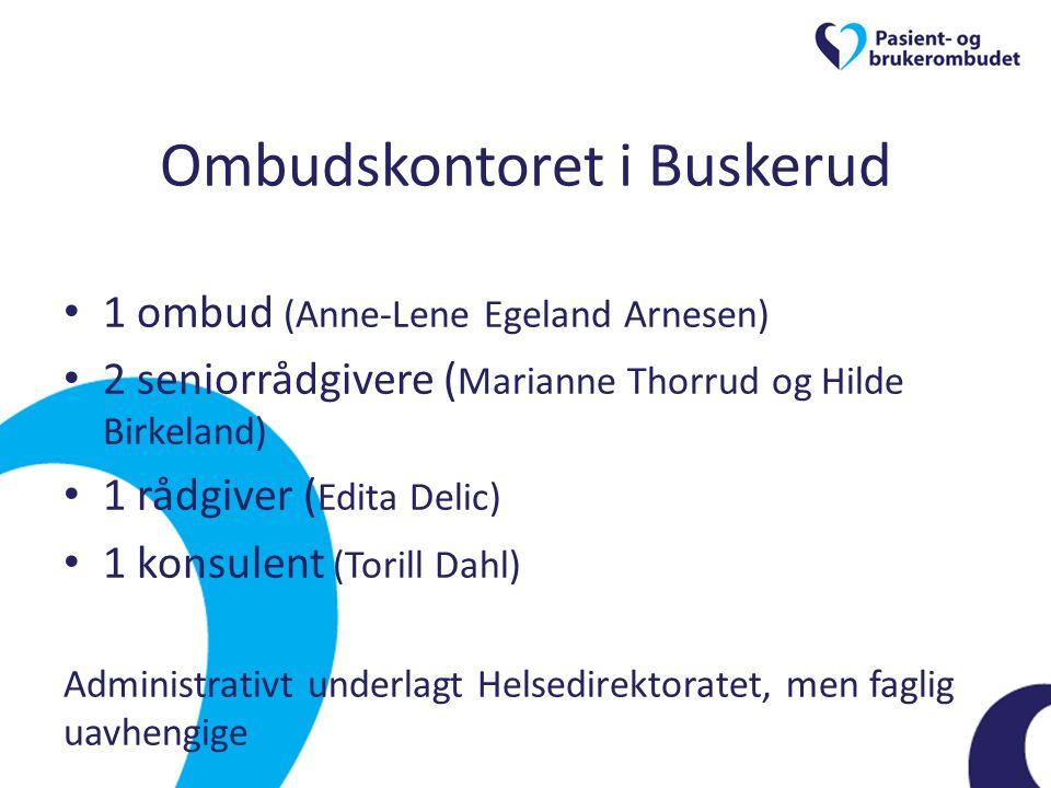 Ombudskontoret i Buskerud • 1 ombud (Anne-Lene Egeland Arnesen) • 2 seniorrådgivere ( Marianne Thorrud og Hilde Birkeland) • 1 rådgiver ( Edita Delic)