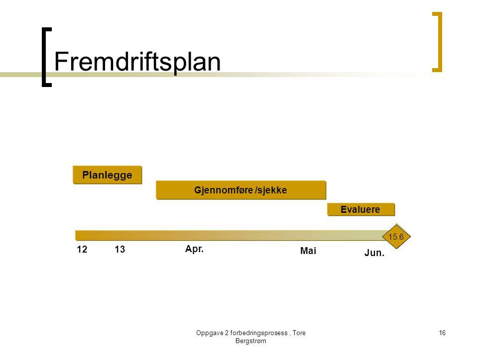 Oppgave 2 forbedringsprosess, Tore Bergstrøm 16 Fremdriftsplan 1213 Apr. Mai Planlegge Gjennomføre /sjekke Evaluere Jun. 15.6