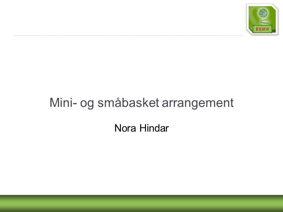 Mini- og småbasket arrangement Nora Hindar