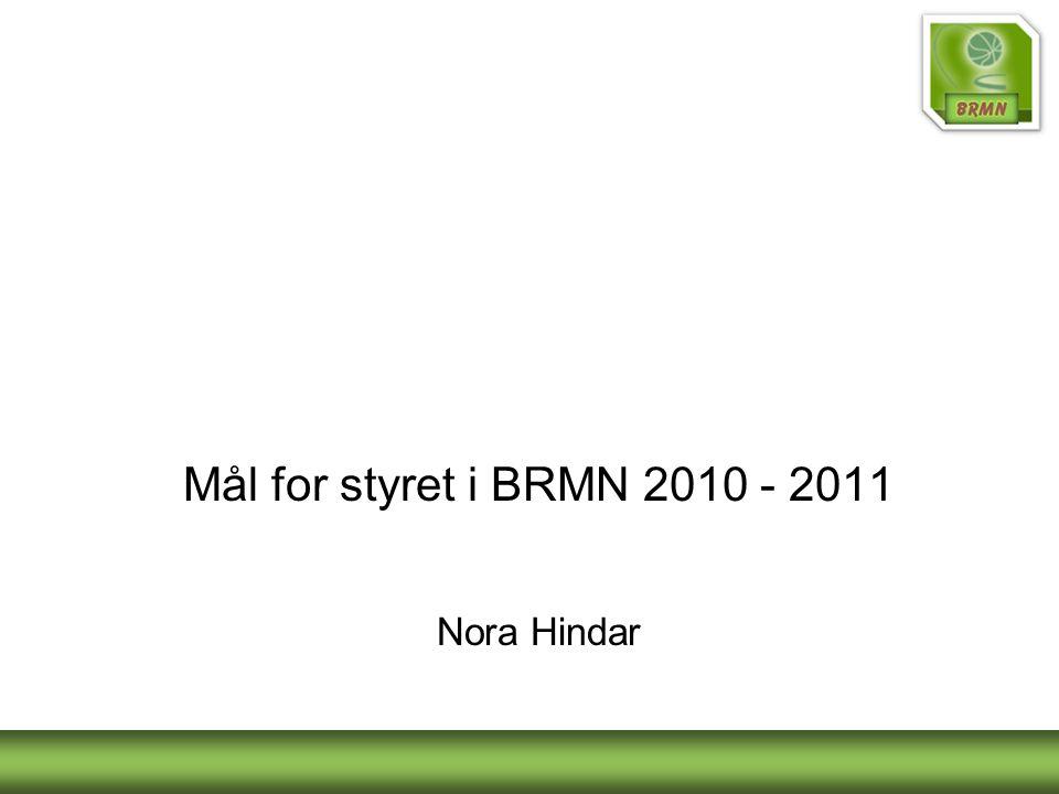 Mål for styret i BRMN 2010 - 2011 Nora Hindar