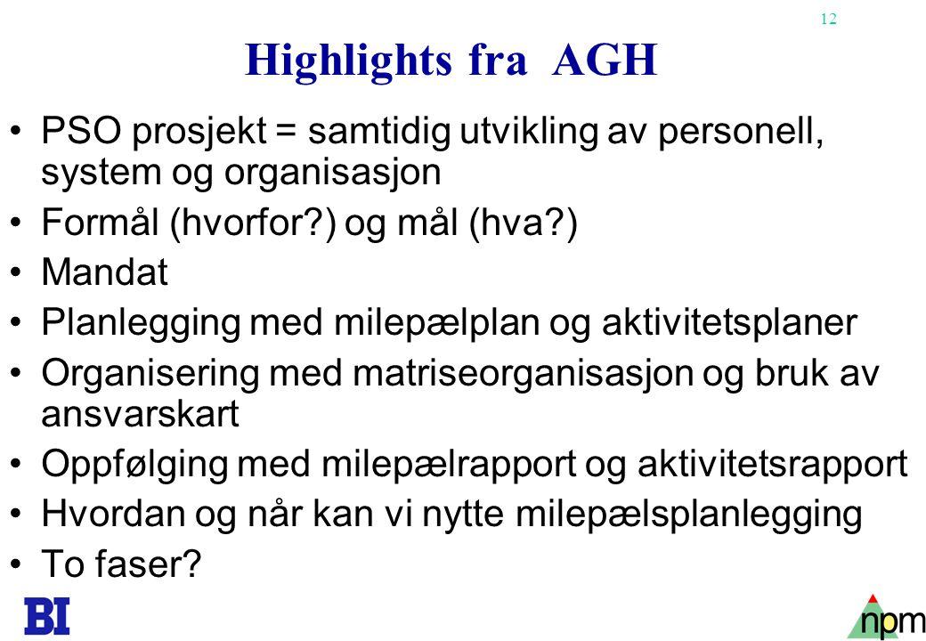 12 Highlights fra AGH •PSO prosjekt = samtidig utvikling av personell, system og organisasjon •Formål (hvorfor?) og mål (hva?) •Mandat •Planlegging me