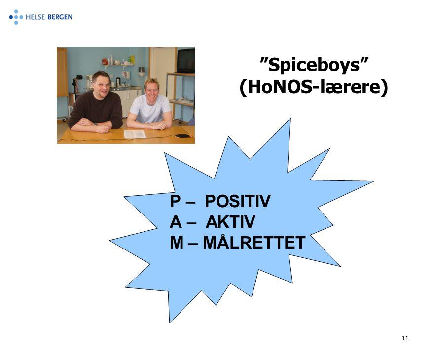 "11 P – POSITIV A – AKTIV M – MÅLRETTET ""Spiceboys"" (HoNOS-lærere)"