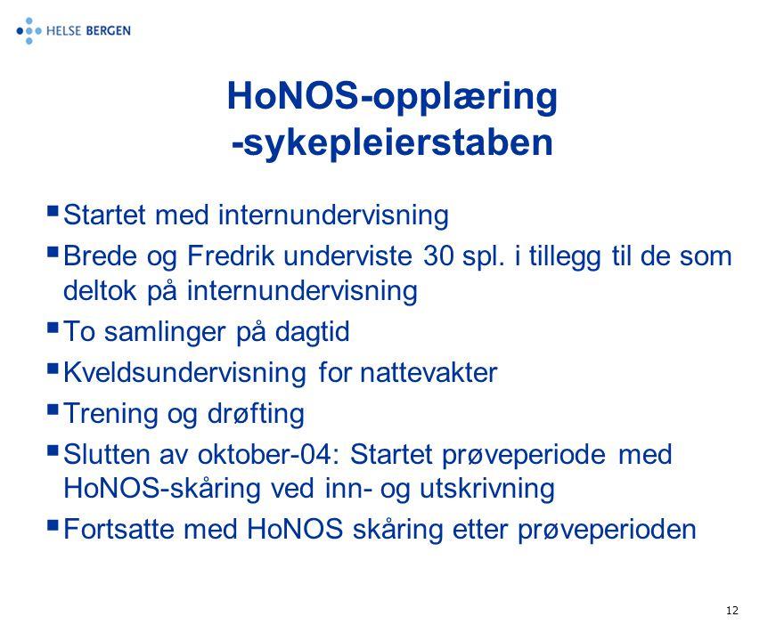 12 HoNOS-opplæring -sykepleierstaben  Startet med internundervisning  Brede og Fredrik underviste 30 spl. i tillegg til de som deltok på internunder