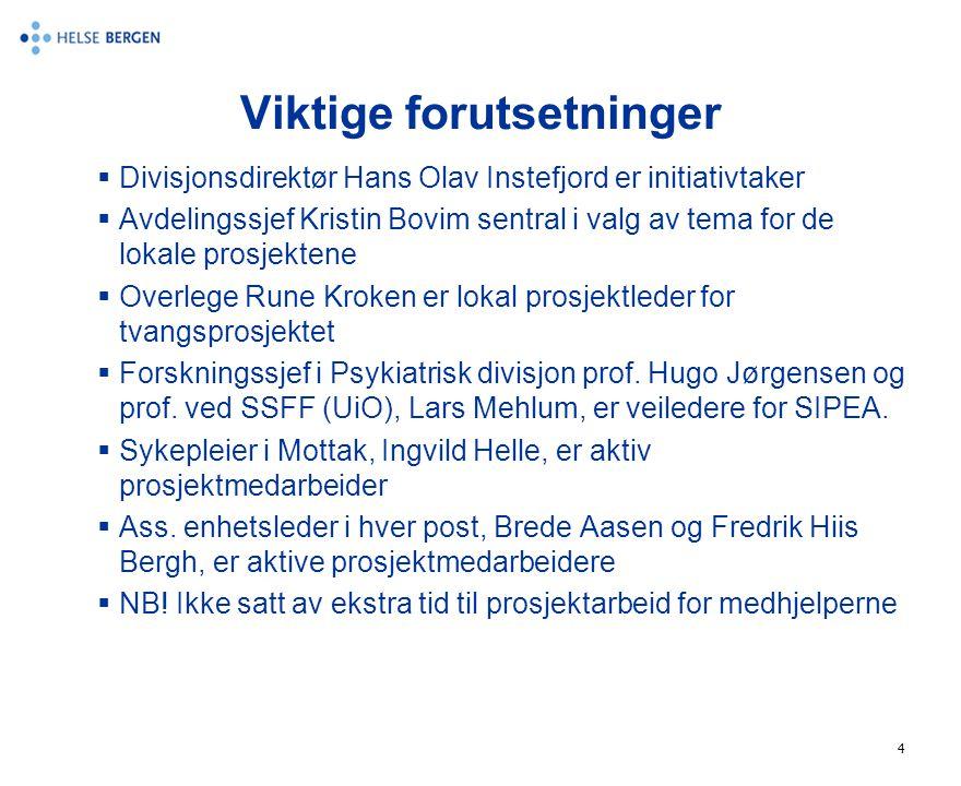 4 Viktige forutsetninger  Divisjonsdirektør Hans Olav Instefjord er initiativtaker  Avdelingssjef Kristin Bovim sentral i valg av tema for de lokale