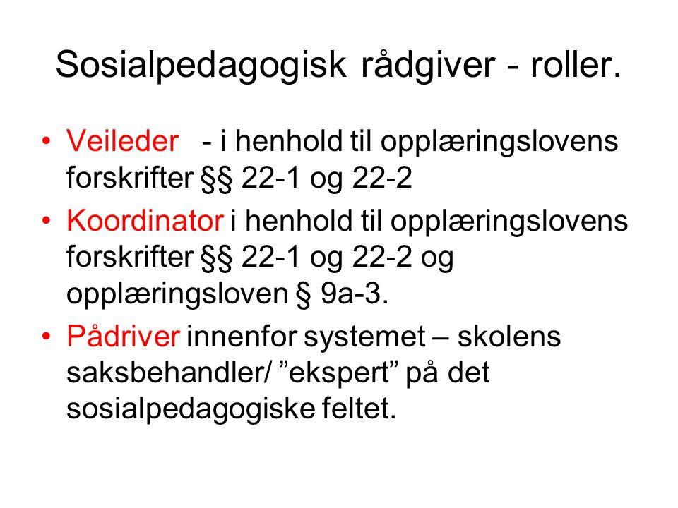 Sosialpedagogisk rådgiver - roller.