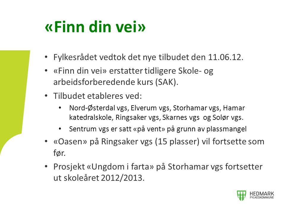 «Finn din vei» • Fylkesrådet vedtok det nye tilbudet den 11.06.12. • «Finn din vei» erstatter tidligere Skole- og arbeidsforberedende kurs (SAK). • Ti