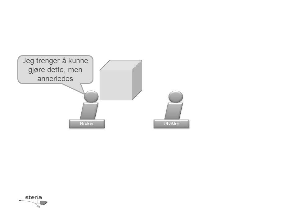 Produkteier Bruker Designer Arkitekt Hva er løpenr? Utvikler 19 Jeg skal spørre.