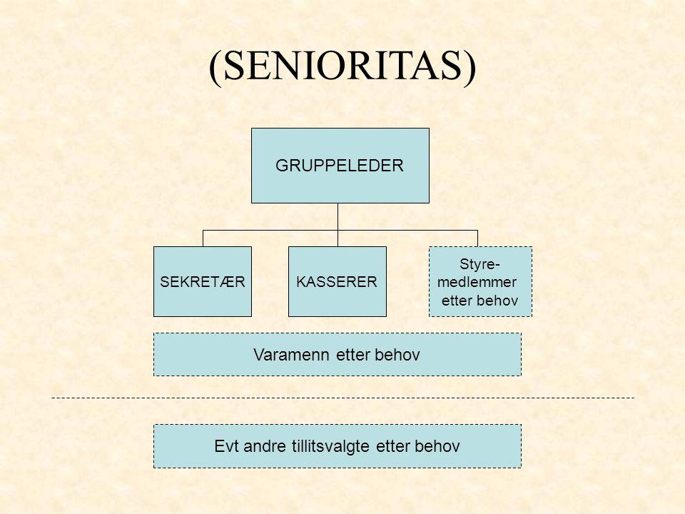 GRUPPELEDER SEKRETÆR (SENIORITAS) KASSERER Styre- medlemmer etter behov Varamenn etter behov Evt andre tillitsvalgte etter behov