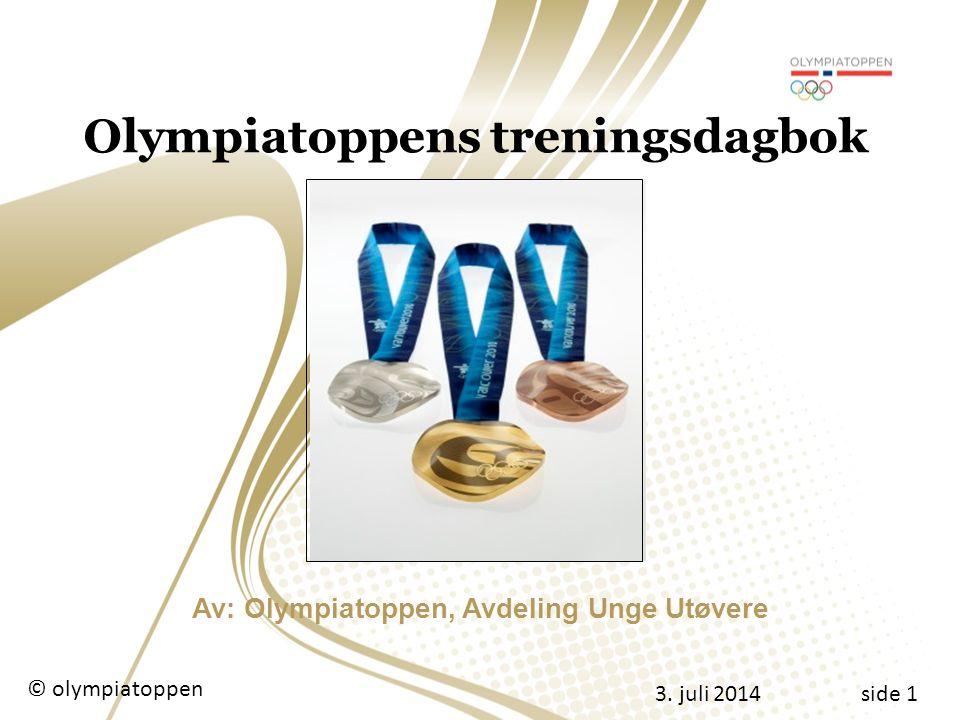 3.juli 2014 © olympiatoppenside 12 Statistikk Oversikt Utholdenhet © olympiatoppen 3.