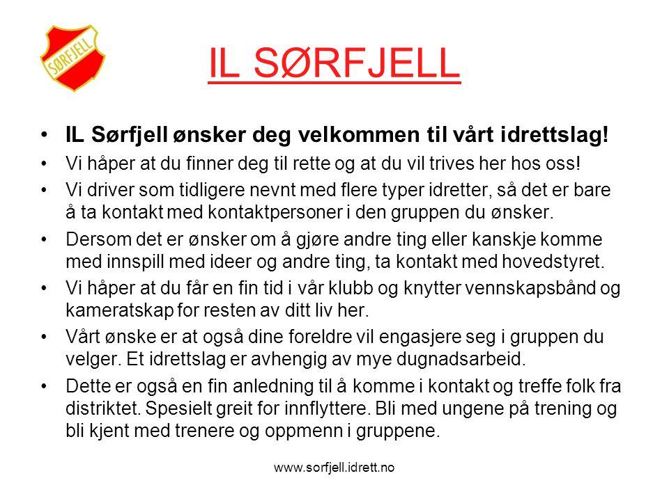 www.sorfjell.idrett.no IL SØRFJELL •IL Sørfjell ønsker deg velkommen til vårt idrettslag.