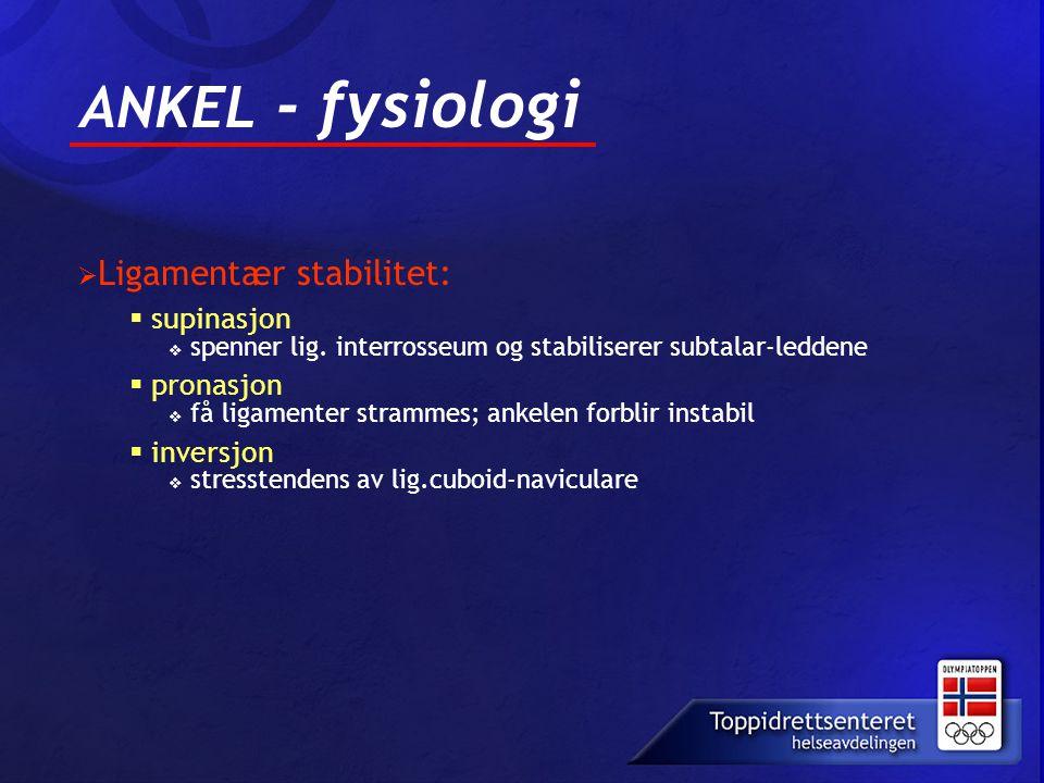 ANKEL - fysiologi  Ligamentær stabilitet:  supinasjon  spenner lig. interrosseum og stabiliserer subtalar-leddene  pronasjon  få ligamenter stram