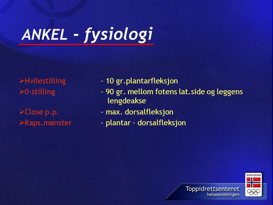 ANKEL - fysiologi  Hvilestilling - 10 gr.plantarfleksjon  0-stilling - 90 gr. mellom fotens lat.side og leggens lengdeakse  Close p.p. - max. dorsa