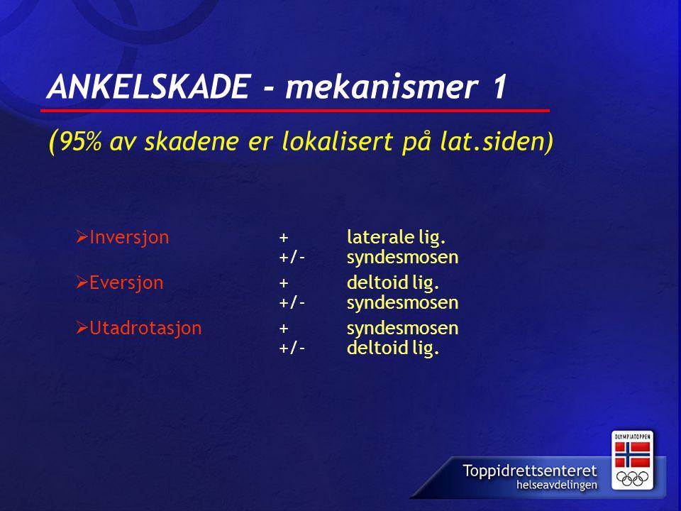 ANKELSKADE - mekanismer 1 ( 95% av skadene er lokalisert på lat.siden)  Inversjon + laterale lig. +/- syndesmosen  Eversjon+ deltoid lig. +/- syndes