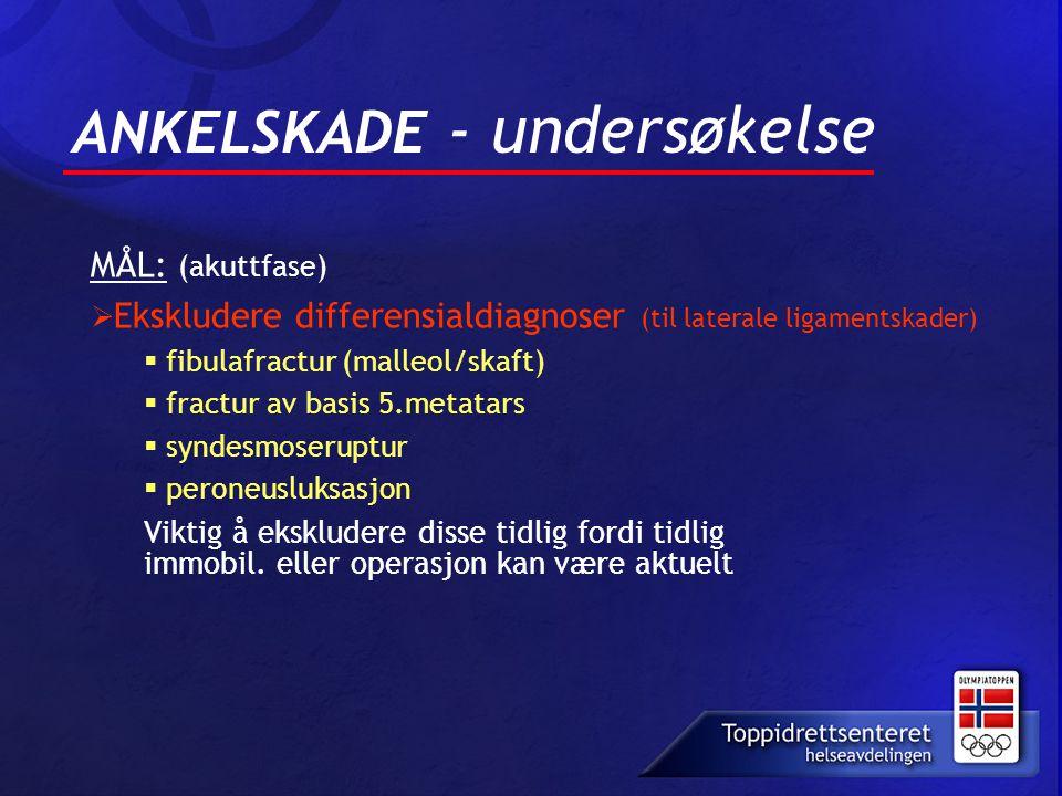 ANKELSKADE - undersøkelse MÅL: (akuttfase)  Ekskludere differensialdiagnoser (til laterale ligamentskader)  fibulafractur (malleol/skaft)  fractur