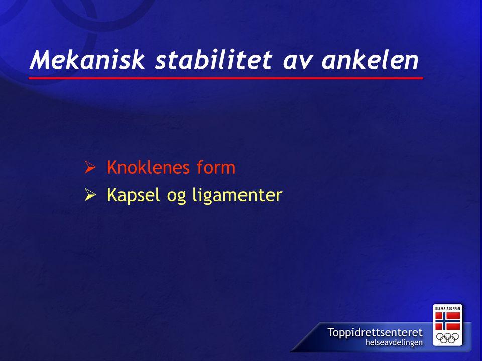 Mekanisk stabilitet av ankelen  Knoklenes form  Kapsel og ligamenter