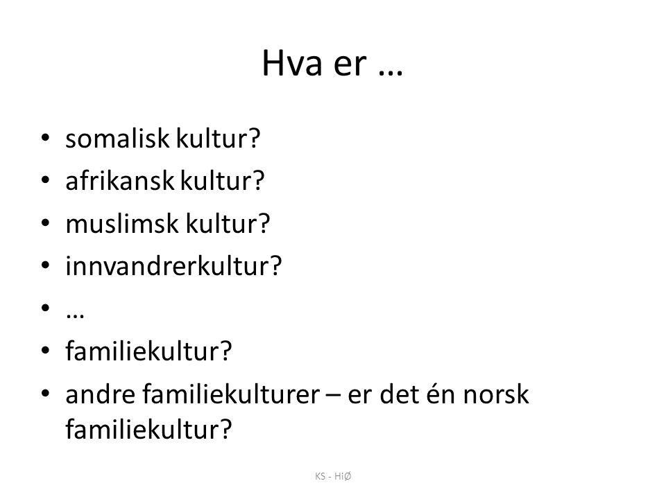 Hva er … • somalisk kultur? • afrikansk kultur? • muslimsk kultur? • innvandrerkultur? • … • familiekultur? • andre familiekulturer – er det én norsk