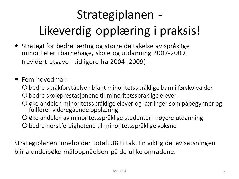 Strategiplanen - Likeverdig opplæring i praksis!  Strategi for bedre læring og større deltakelse av språklige minoriteter i barnehage, skole og utdan