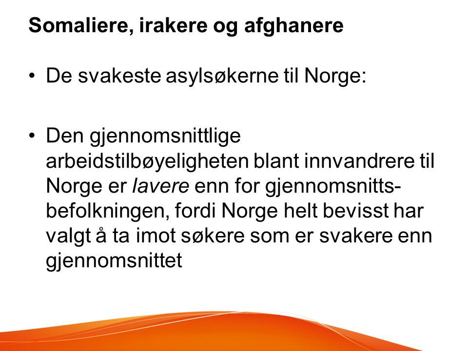 Somaliere, irakere og afghanere •De svakeste asylsøkerne til Norge: •Den gjennomsnittlige arbeidstilbøyeligheten blant innvandrere til Norge er lavere enn for gjennomsnitts- befolkningen, fordi Norge helt bevisst har valgt å ta imot søkere som er svakere enn gjennomsnittet