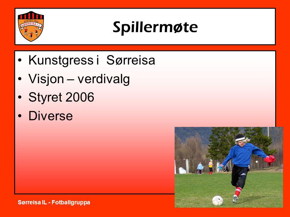 Sørreisa IL - Fotballgruppa Spillermøte •Kunstgress i Sørreisa •Visjon – verdivalg •Styret 2006 •Diverse
