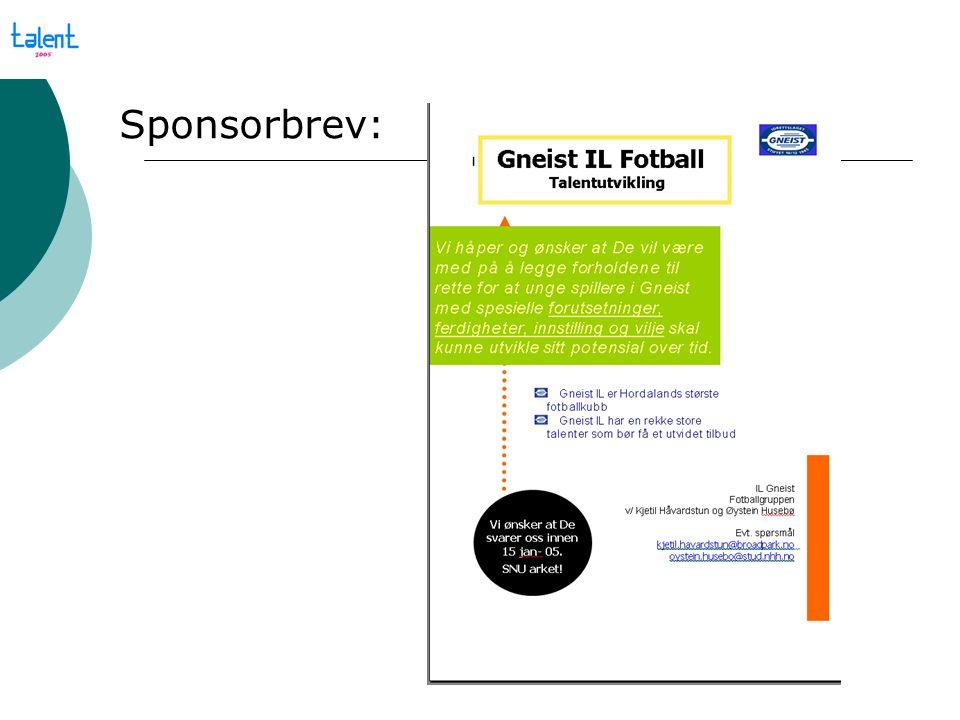 Vi tilbyr Hovedsponsor  Logo på www.gneist.no under linken til Talentgruppenwww.gneist.no  Logo på genser evt.