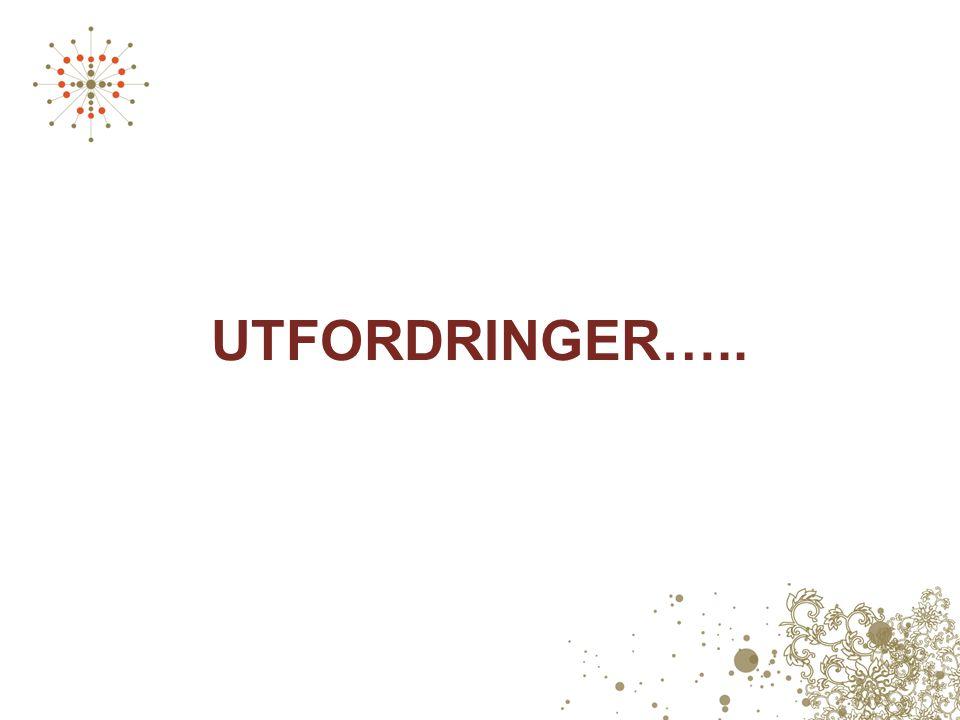 UTFORDRINGER…..