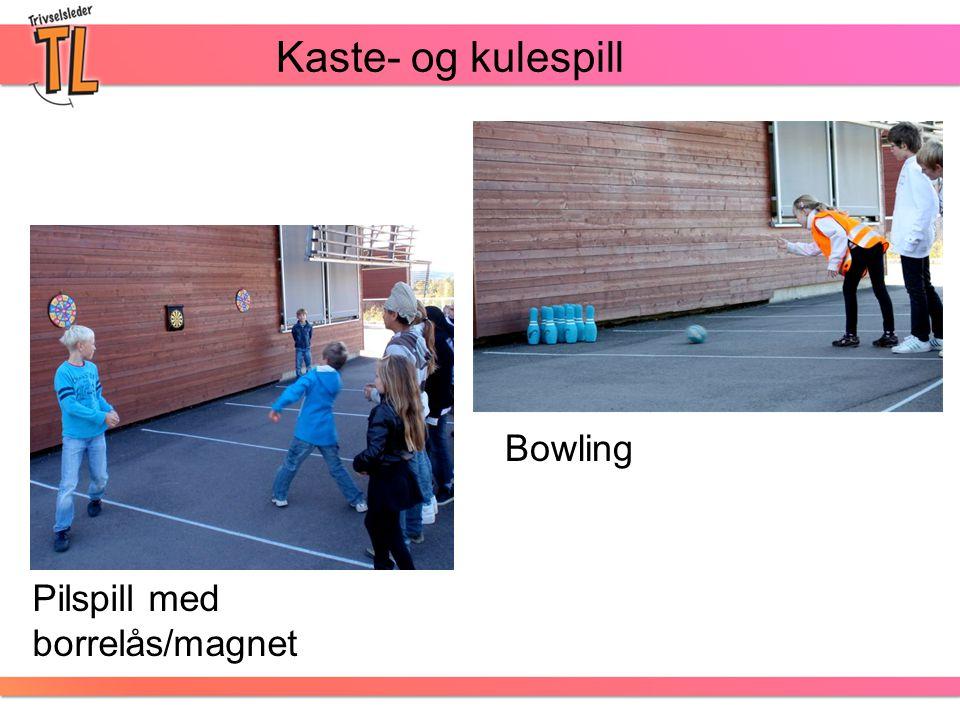 Kaste- og kulespill Pilspill med borrelås/magnet Bowling