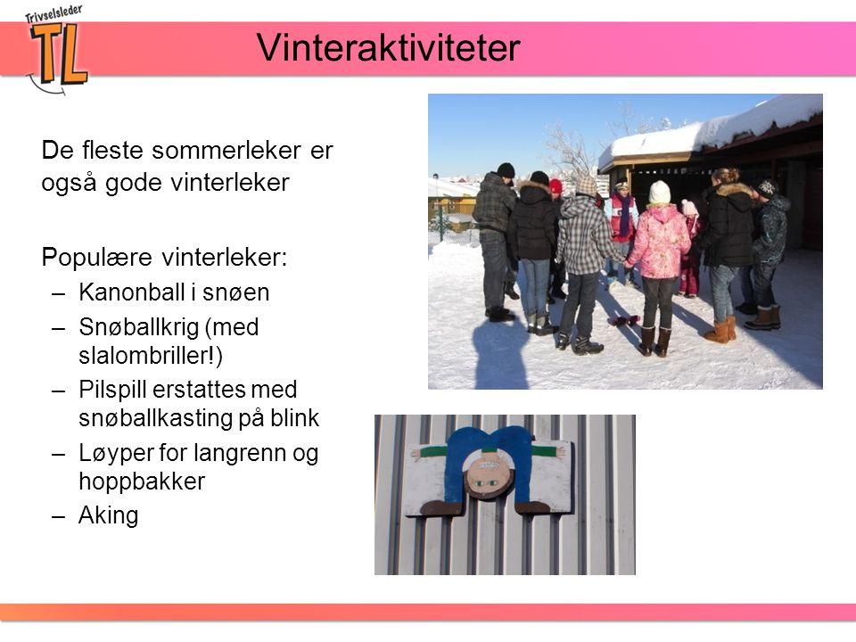 Vinteraktiviteter De fleste sommerleker er også gode vinterleker Populære vinterleker: –Kanonball i snøen –Snøballkrig (med slalombriller!) –Pilspill