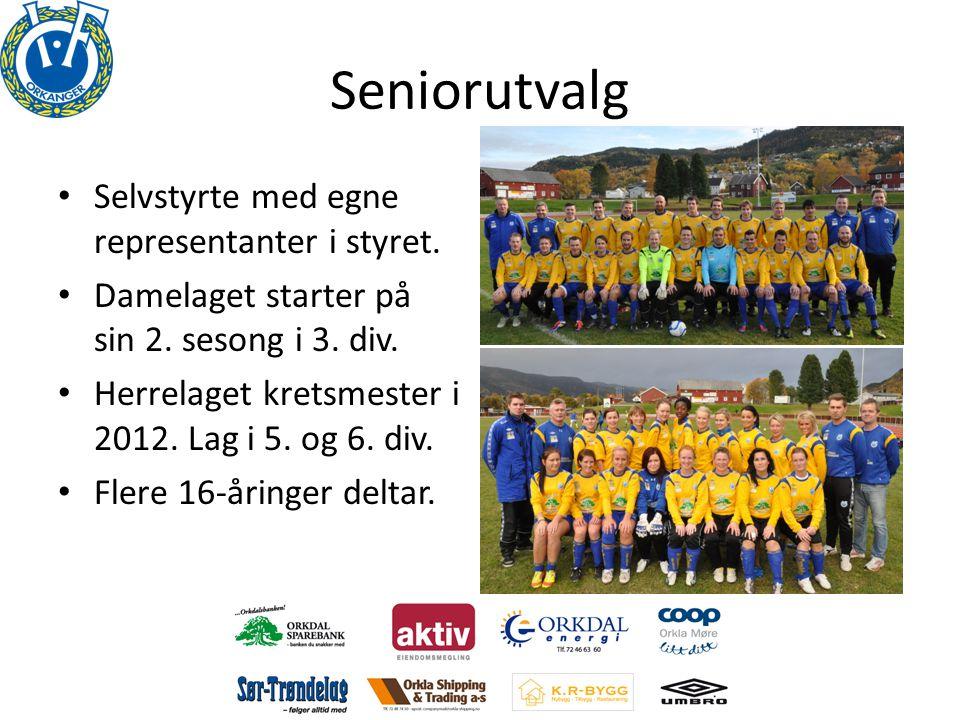 Seniorutvalg • Selvstyrte med egne representanter i styret. • Damelaget starter på sin 2. sesong i 3. div. • Herrelaget kretsmester i 2012. Lag i 5. o