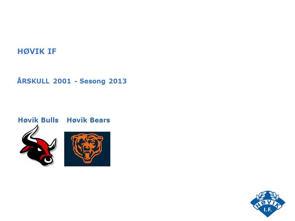 HØVIK IF ÅRSKULL 2001 - Sesong 2013 Høvik BearsHøvik Bulls