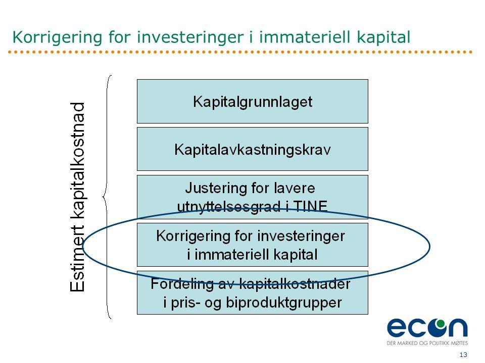 13 Korrigering for investeringer i immateriell kapital