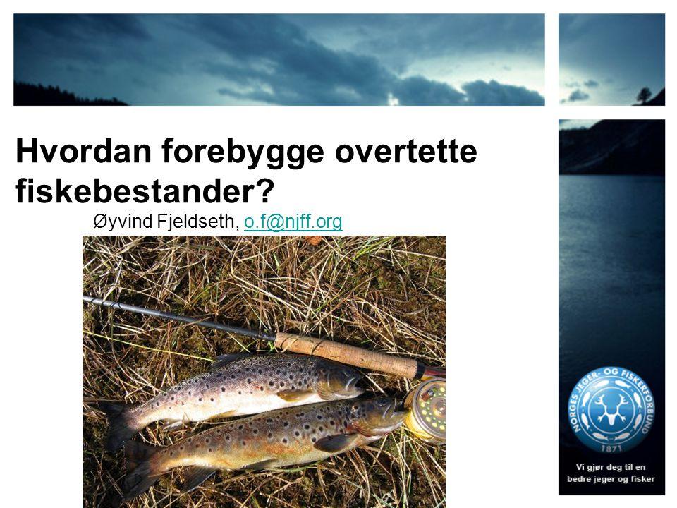 Hvordan forebygge overtette fiskebestander? Øyvind Fjeldseth, o.f@njff.orgo.f@njff.org