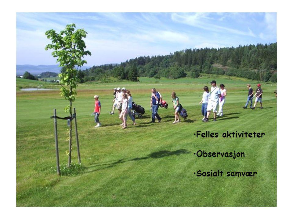 •Felles aktiviteter •Observasjon •Sosialt samvær