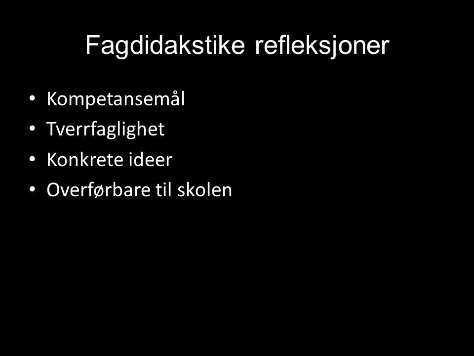 Fagdidakstike refleksjoner • Kompetansemål • Tverrfaglighet • Konkrete ideer • Overførbare til skolen