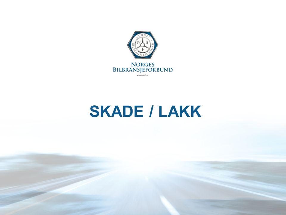 SKADE / LAKK