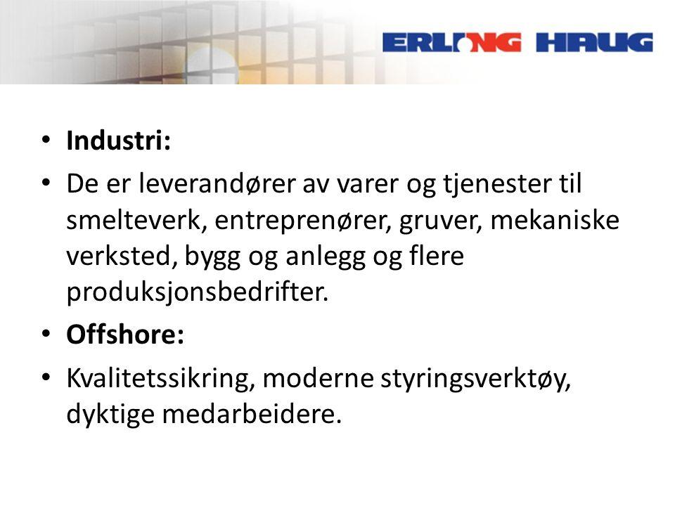 • Industri: • De er leverandører av varer og tjenester til smelteverk, entreprenører, gruver, mekaniske verksted, bygg og anlegg og flere produksjonsb
