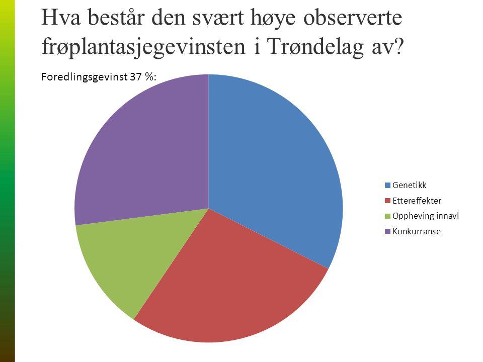 Hva består den svært høye observerte frøplantasjegevinsten i Trøndelag av